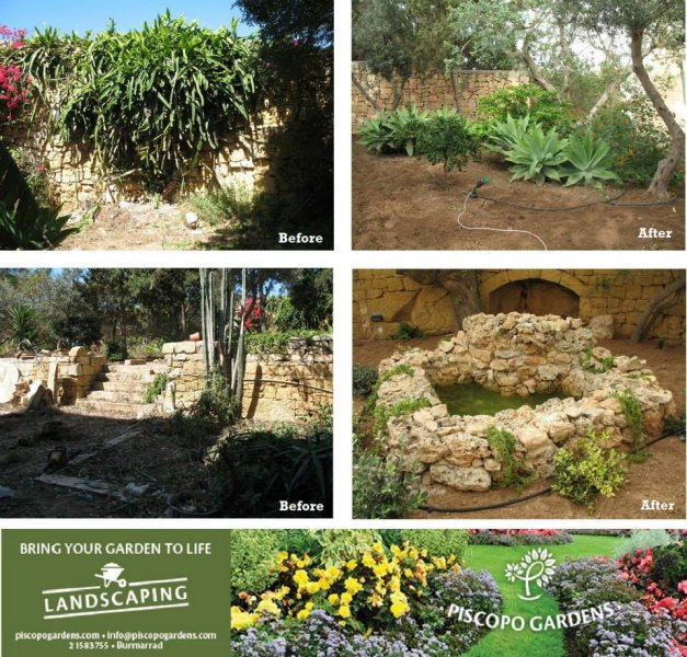 Garden Centre: Piscopo Gardens-Landscape Gardeners San Pawl Il-Bahar