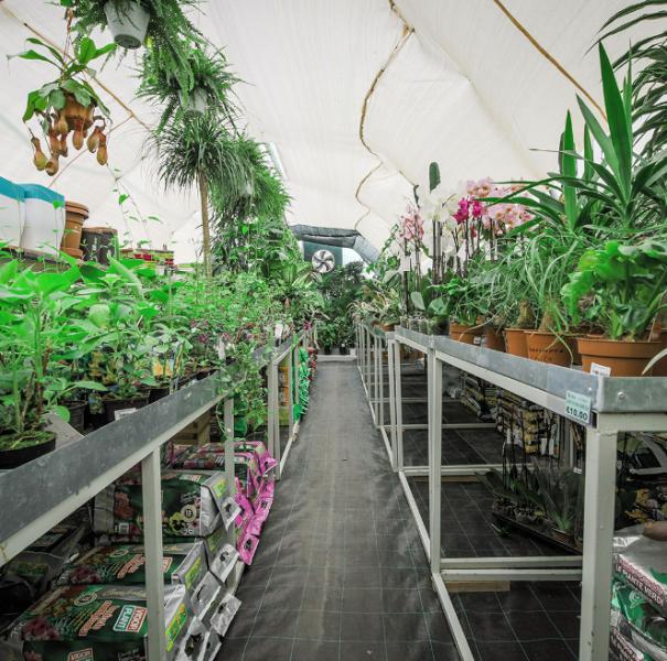 Garden Centre: Callus Garden Centre-Landscape Gardeners Is-Siggiewi,Malta