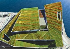 Green roofs for your home or office